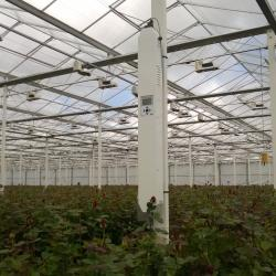MacView Greenhouse Gas Analyser in roses